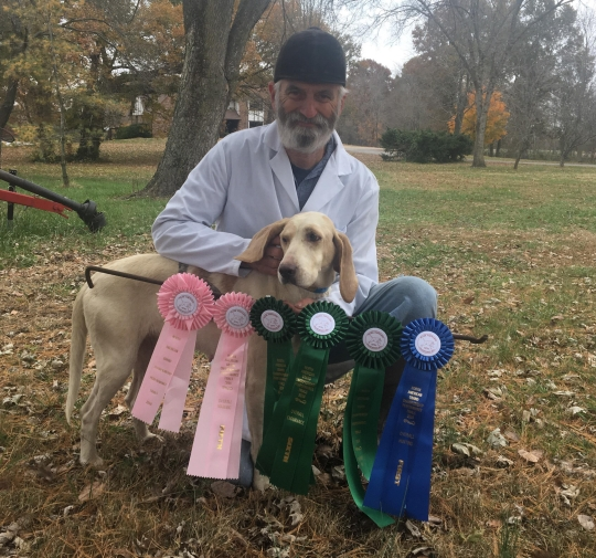 Zin with her ribbons from the Hark Forward Performance Hound Trial Championship and huntsman Mark Smith.