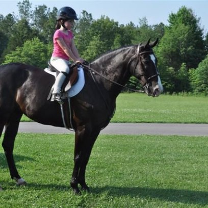 Little Alison on Midnight (retired Shawnee staff horse)